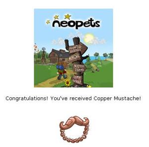 Copper_moustache2