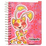 notebook_aisha_disco